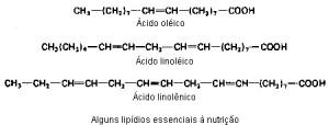 acidos