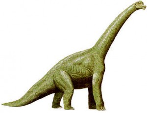 braquiossauro02