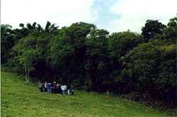 ecologia09