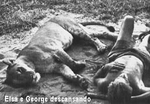 george8