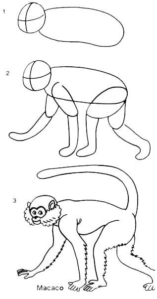 desenho_macaco
