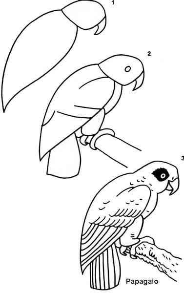 desenho_papagaio