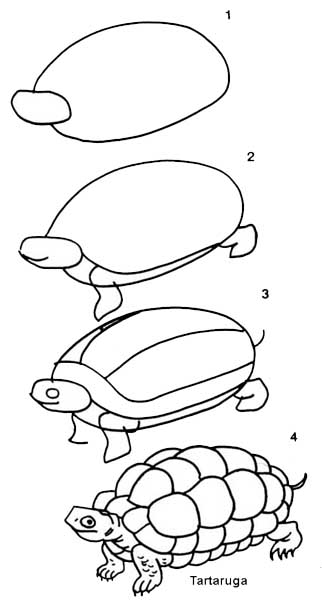 desenho_tartaruga