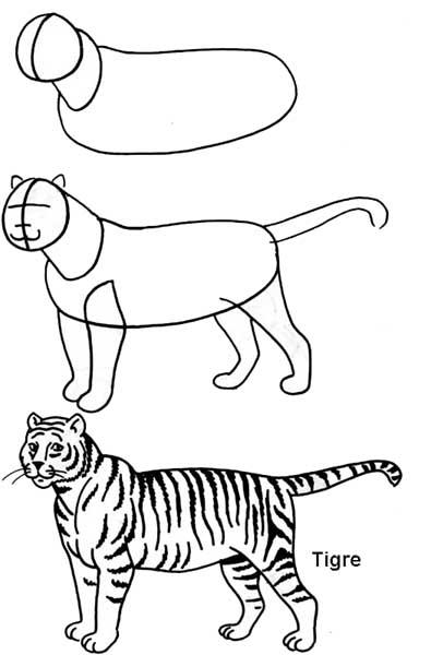 desenho_tigre
