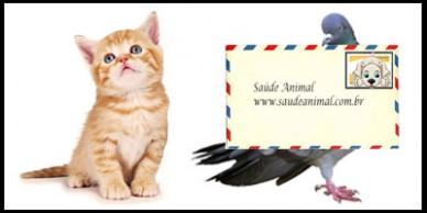 faq_cat