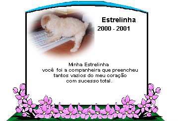 horizonte_estrelinha