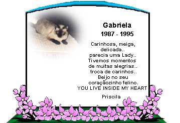 horizonte_gabriela