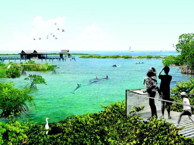 dolphins_sanctuary_fran