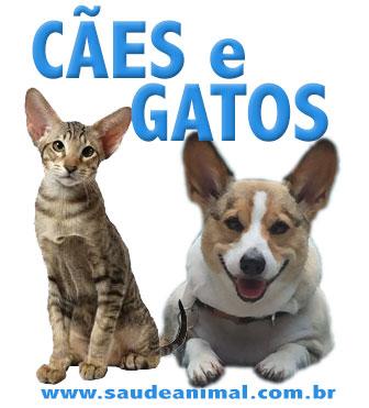 logo_caes_gatos