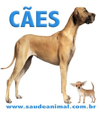 caes_logo