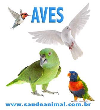 logo_aves