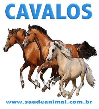 logo_cavalos