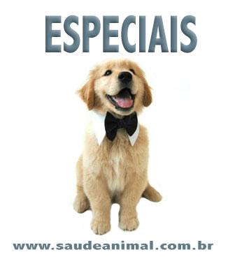 logo_especial