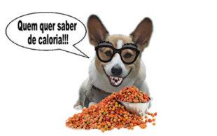 destaque_calorias