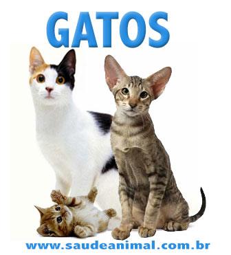 logo_gatos