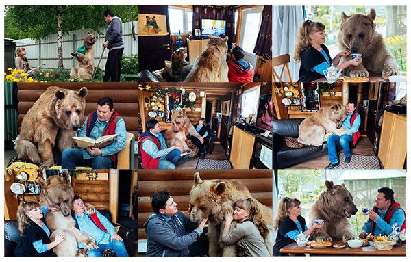 urso_familia