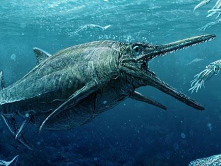 Após 50 anos, monstro marinho do Jurássico sai do anonimato (Foto: Reprodução/Twitter/Ntl Museums Scotland)