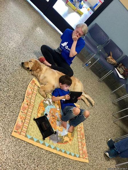 Post que mostra filho de Shanna Niehaus deitado sobre cão teve mais de 200 mil compartilhamentos (Foto: Facebook/4 Paws for Ability)