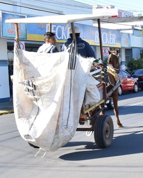 Protetores buscam erradicar o uso de cavalos para puxar nas carroças e charretes em Venâncio