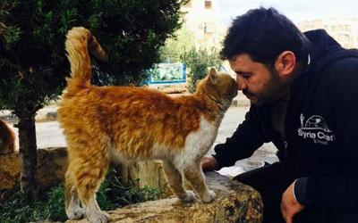 Homem reconstrói santuário de gatos destruído em meio à guerra na ... 697e21805902
