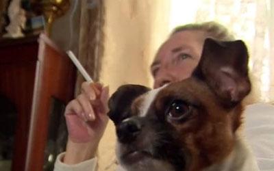 Amanda Cook não tinha ideia do mal que pode estar provocando em sua cadela (Foto: BBC)